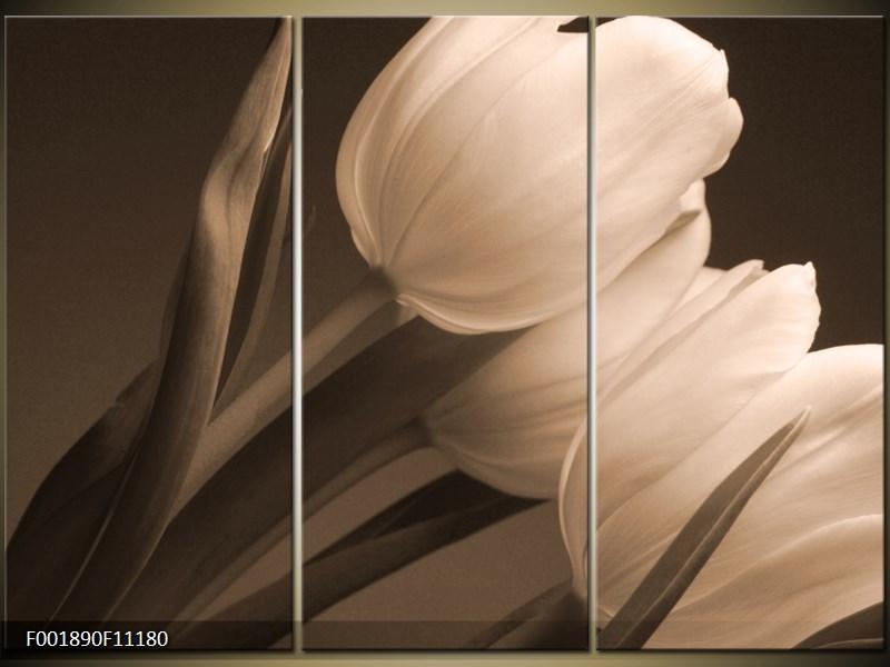 Moderní obrazy- umění