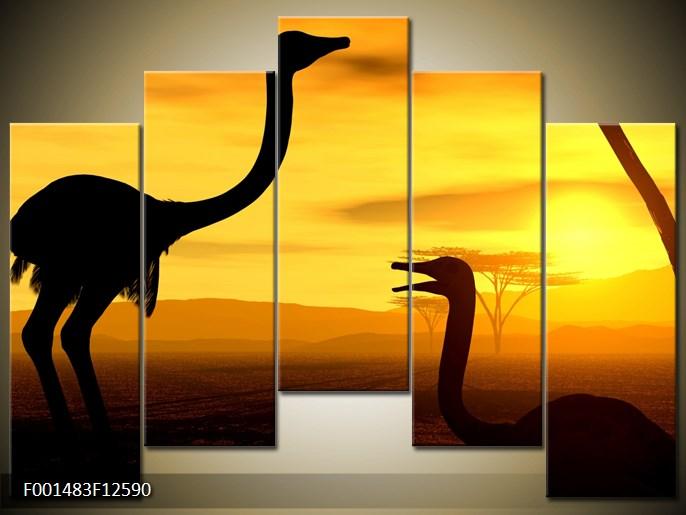Obrazy zvířat