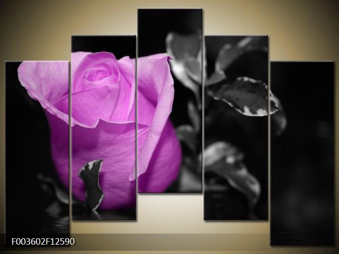 Moderní obrazy květin