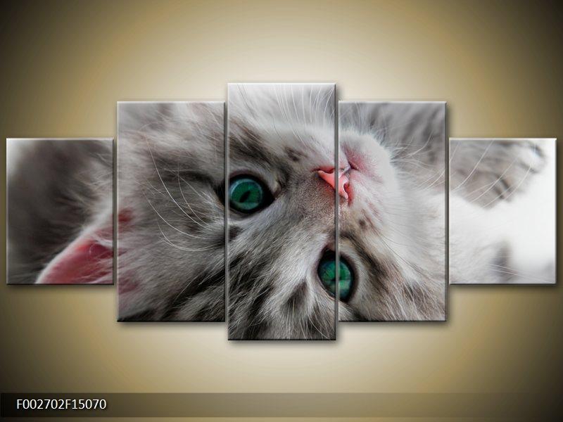 Vícedílné obrazy pětidílné 5D