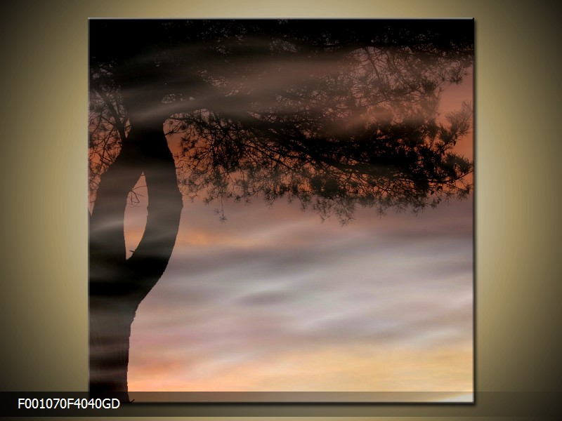 Skleněný obraz 40x40 cm